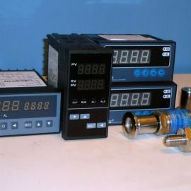 超小型真空度数显面板表ZXS-200A