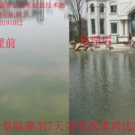 新景除藻剂