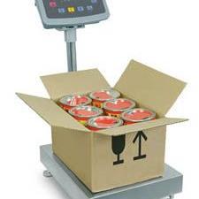 赛多利斯IW2P1-300GF-R电子台秤