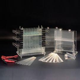 普通教学实验装置电泳仪/DYCZ-21多用途电泳槽