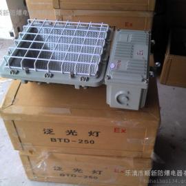 供应BTD-L250防爆泛光灯