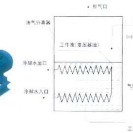 2BV油(液)环式真空泵