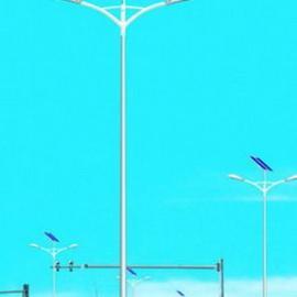30瓦太阳能路灯/35瓦太阳能路灯