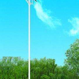 70瓦太阳能路灯/75瓦太阳能路灯