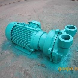 2BV2071水环真空泵直销