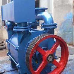 2BEA-202水环式真空泵