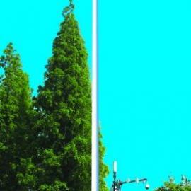 25米高杆灯/25米高杆灯价格/25米高杆灯厂家