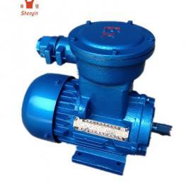 YB2系列fang爆电机 YB2-100L-2 3KW