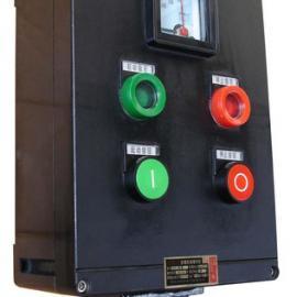 FZC两灯两扭一表防水防尘防腐操作柱