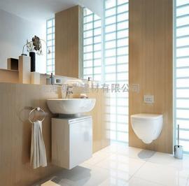 墙pai式同层pai水系统,厕所PE同层pai水