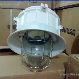 FAD-L-L400三防密闭金卤灯