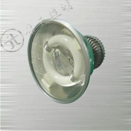 GC108免维护节能无极灯|80W无极灯
