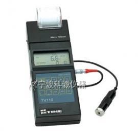 时代TV110便携式测振仪(停产)