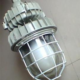 CCD防爆免维护无极灯