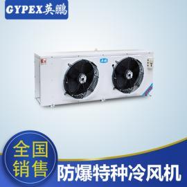 工业爆特种空调,冷板喷塑DD-15