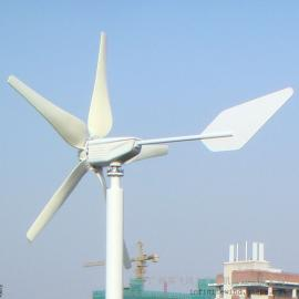 600W风力发电机组 小型风力发电机组-英飞风力