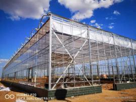 连栋玻璃温室//连栋薄膜温室-奥农苑温室工程有限公司