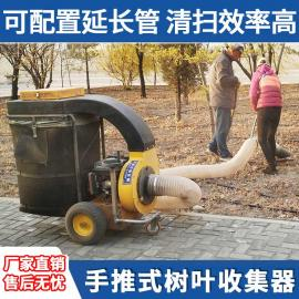 落叶收集设备 汽油大马力吸树叶的机器