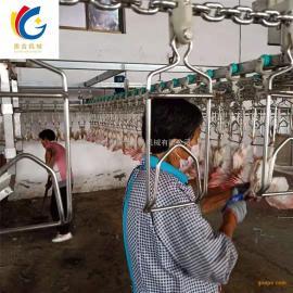 鸽子自动宰杀流水线 乳鸽屠宰生产线定制 杀鸽子设备看性价比
