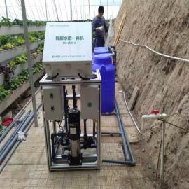 蔬菜果树智能水肥一体机圣大节水灌溉施肥省水环保