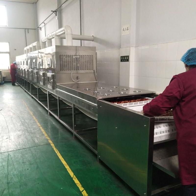 科尔微波红枣专用微波食品烘干杀菌设备KER-SD