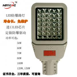 HRD98-100WLED防爆路灯头