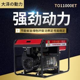大泽动力・ 12kw15KW双gangqi油fa电机 TO13000ET