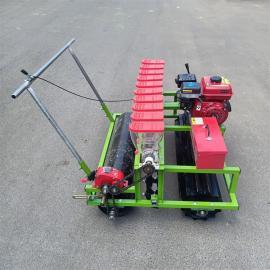 多功能各种蔬菜播种机 适合各种小粒种子 汽油蔬菜播种机