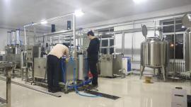 实验型奶酪生产设备可生产各种乳制品 小试酸奶生产线