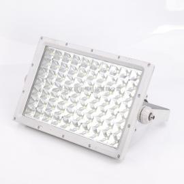 BZD111户外防水LED大功率防爆灯100w