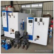 金锅卧式全自动节能蒸汽锅炉食品加工高温燃气蒸汽发生器