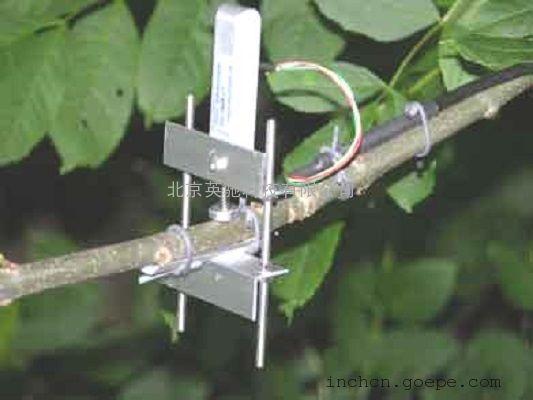 Dendrometer植物生长测量仪