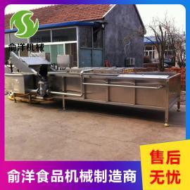 俞洋全自动果蔬清洗机 四季豆气泡加工流水线YY-6000