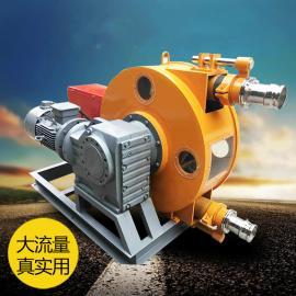YG 蠕动软管泵源头厂家直供 YG-50