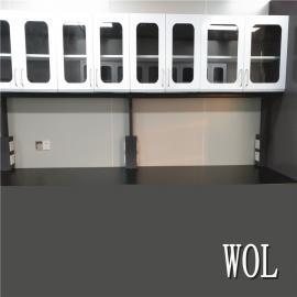 WOL隔离检测室通风系统工程建设WOL-TF009