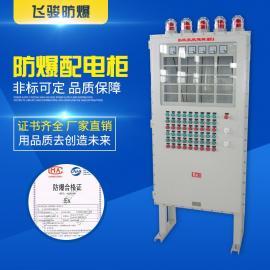 飞骏 定做 防爆立式配电柜钢板焊接防爆仪表控制柜工业工程用BQX
