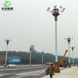 丰滨照明中华玉兰灯户外道路照明工程FB0807