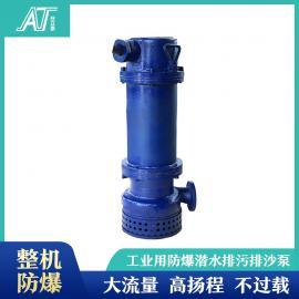 安泰 防爆潜水泵3KW小功率潜污泵 25米扬程 实力生产 WQB15-25-3