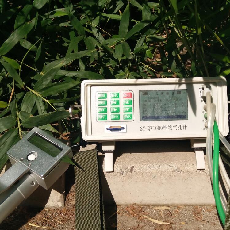SY-QK1000植物气孔计世亚