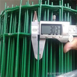中护 墨绿色荷兰网 养鸡场护栏 圈山防护网 浸塑铁丝网 可定制 ZH