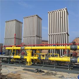 天然气汽化器大型空温式汽化器天然气储备站LNG气化站设备城市门站客户定做
