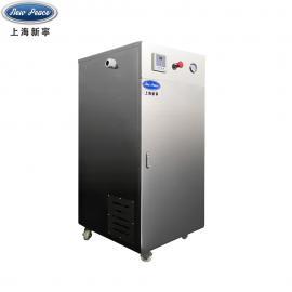 新宁蒸发量63kg,功率48kw蒸汽发sheng器锅炉LDR0.063-0.7