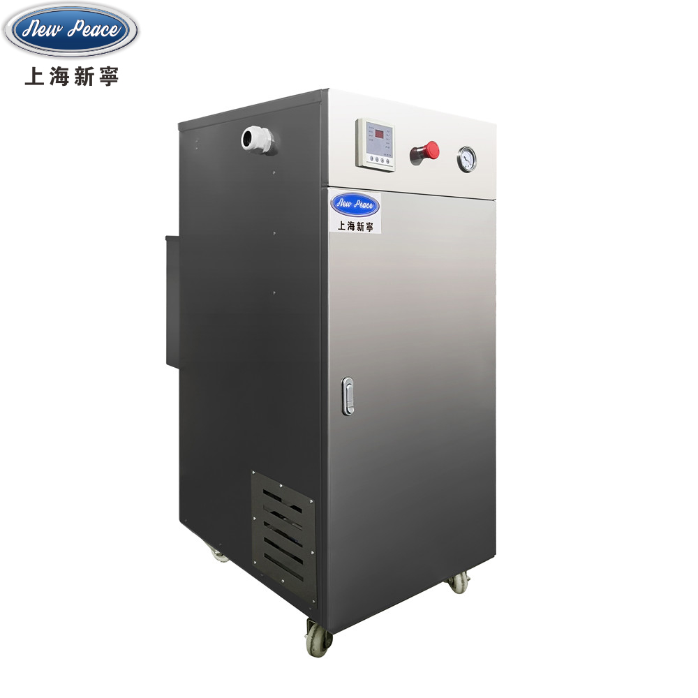 LDR0.063-0.748千瓦蒸发量63kg/h电加热锅炉电蒸汽发生器新宁