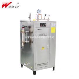 wilford小型不锈钢电加热蒸汽发生器LDR