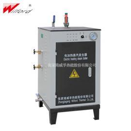 环保电蒸汽发生器