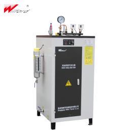 威孚热能立式小型电加热蒸汽发生器LDR
