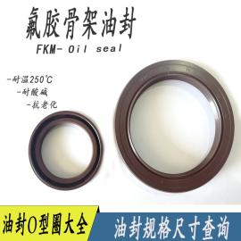 销售NAK骨架油封密封件氟胶耐高温耐腐蚀规格齐全