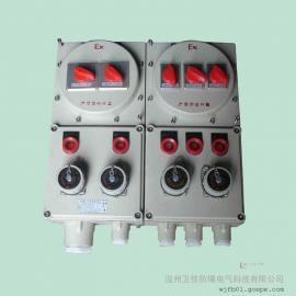 卫佳两回路照明动力防爆检修箱BXMD