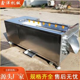 诸城鑫洋机械猪头猪蹄萝卜清洗设备 U型毛辊清洗机xyjx145