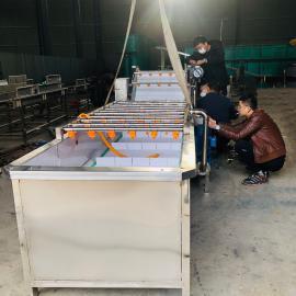 诸城鑫洋机械大叶青菜果蔬气泡清洗机 大型万能食品清洗机xyjx45